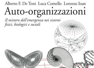 Semplicità e complessità nelle auto-organizzazioni