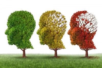 Emergenza Collasso Cognitivo - Selezione, Evoluzione?